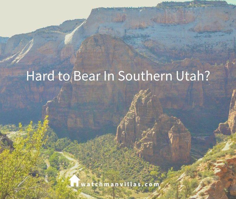 Hard to Bear In Southern Utah?