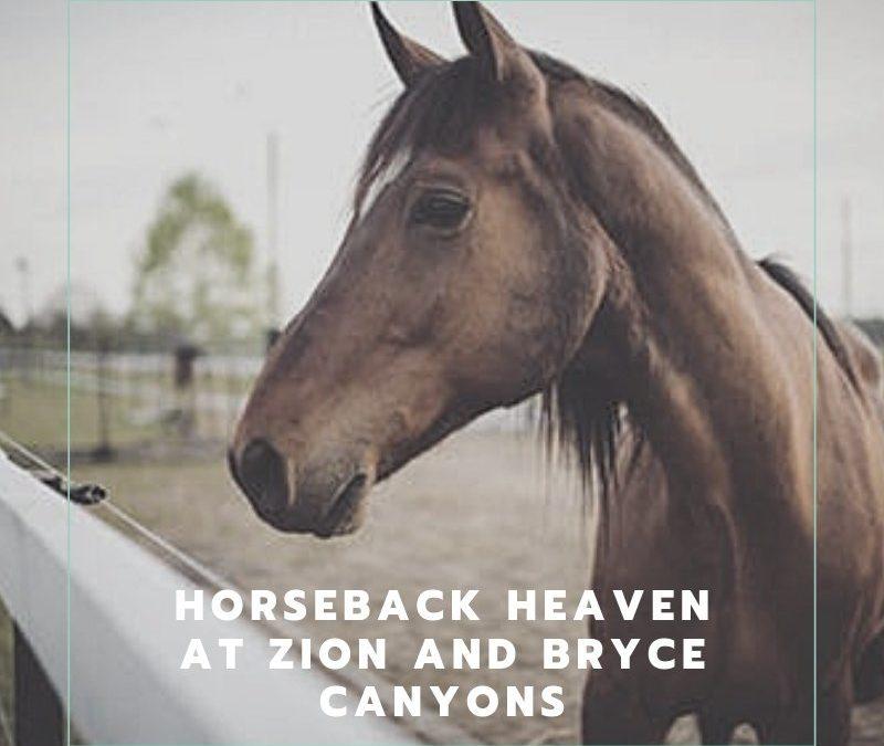 Horseback Heaven At Zion And Bryce Canyons