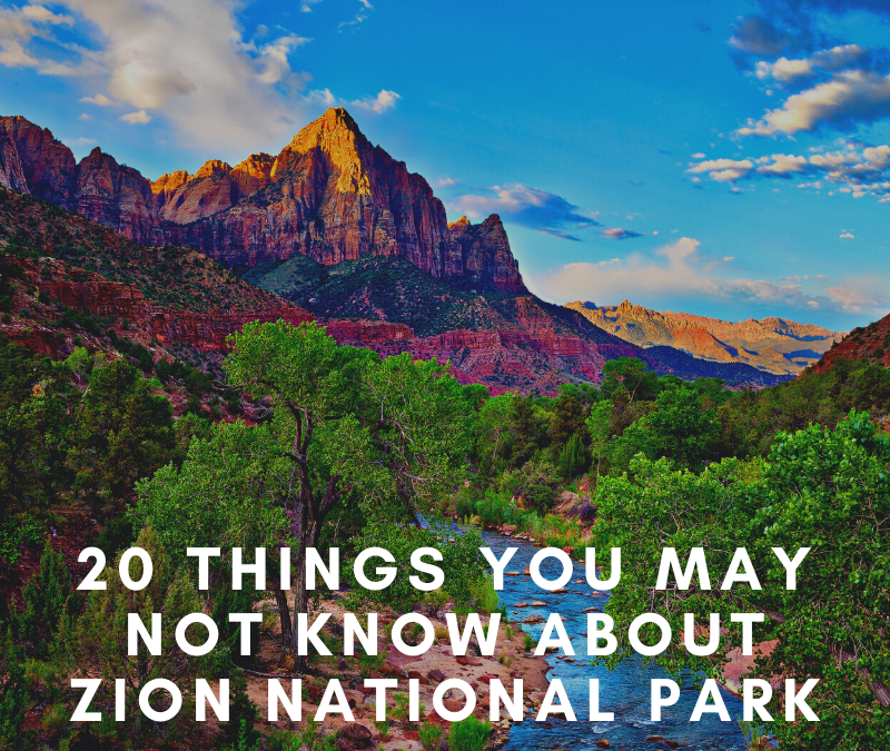 20 Things You May Not Know About Zion National Park